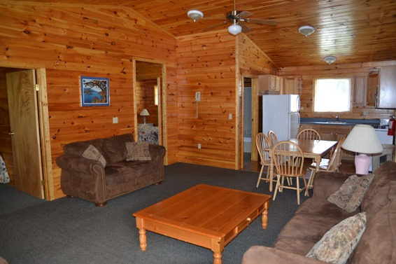 Wood paneled living room with 2 couches