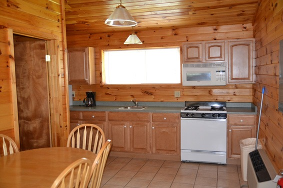 Wood paneled kitchen